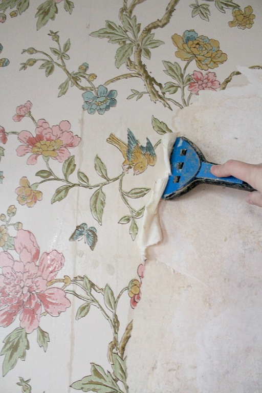 How To Get Wallpaper Off Plaster Walls