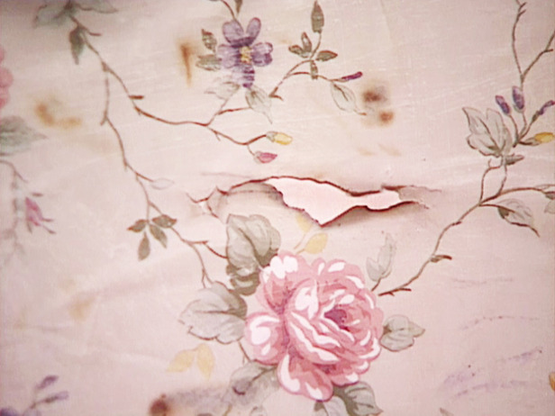 How To Paint Wallpaper