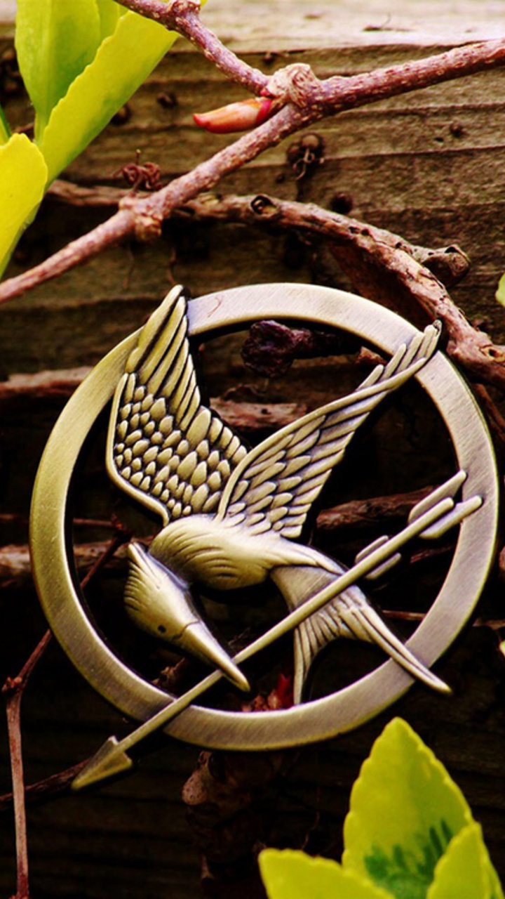 Download Hunger Games Phone Wallpaper Gallery