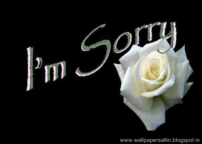I Am Sorry Wallpaper Download