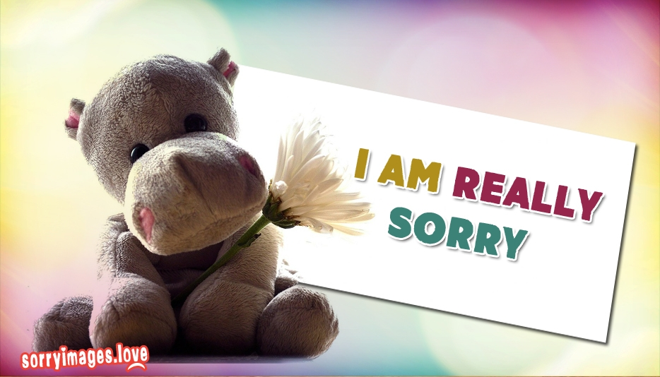 Download I Am Sorry Wallpapers Love Gallery I Am Really Sorry Wallpaper