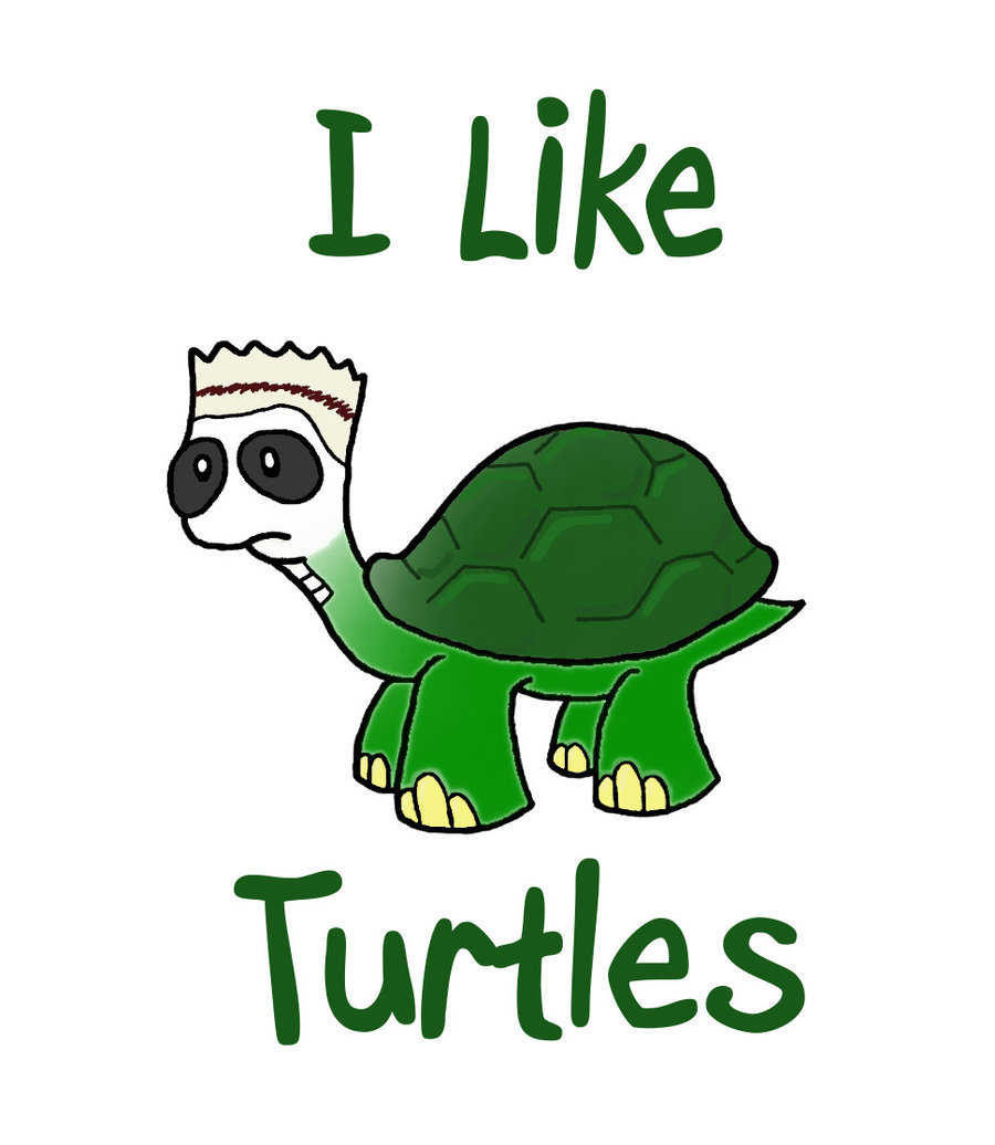 I Like Turtles Wallpaper