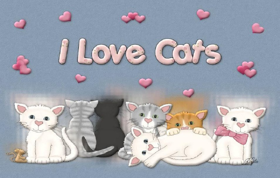 I Love Cats Wallpaper