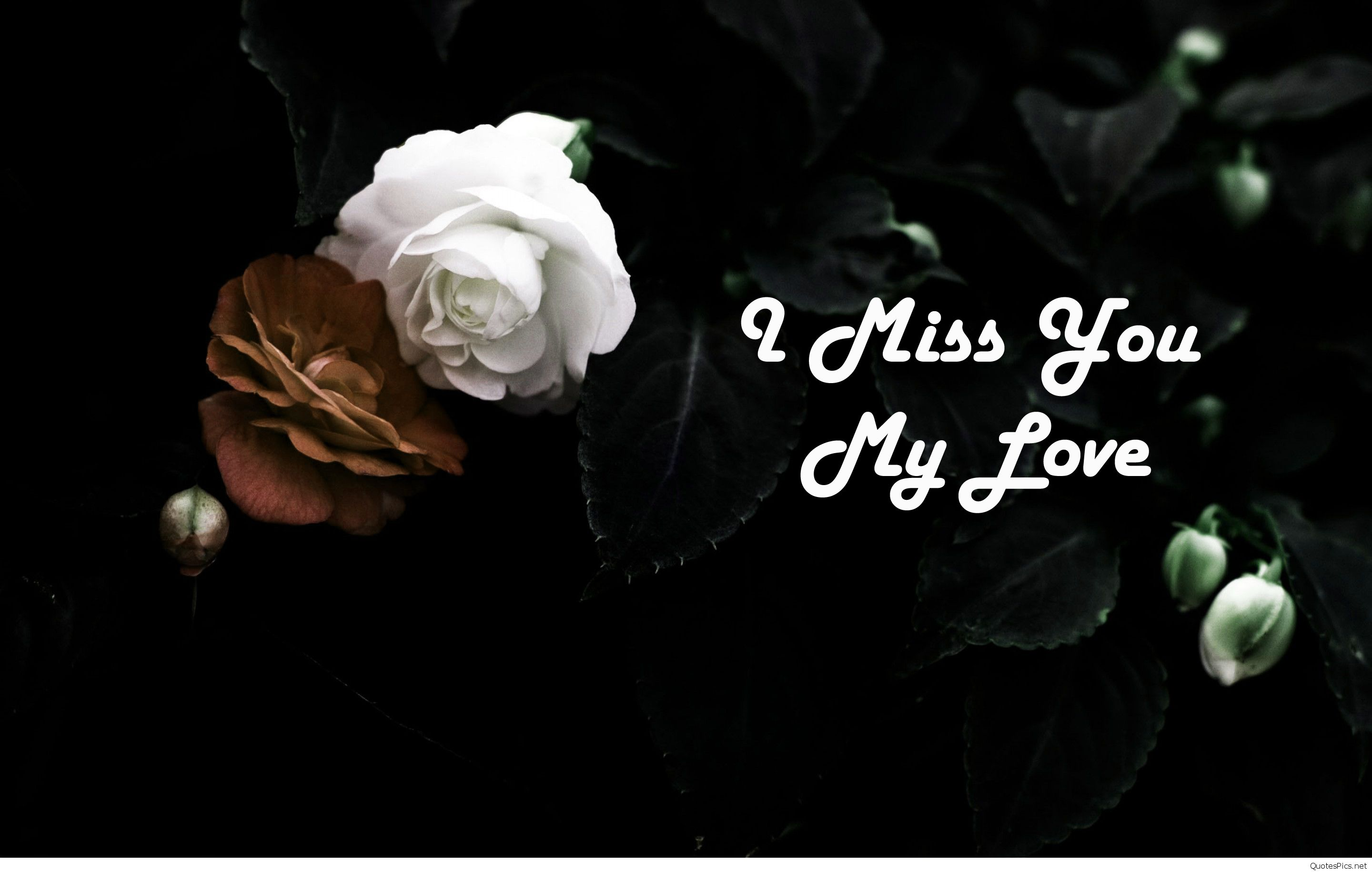 I Miss You My Love Wallpaper