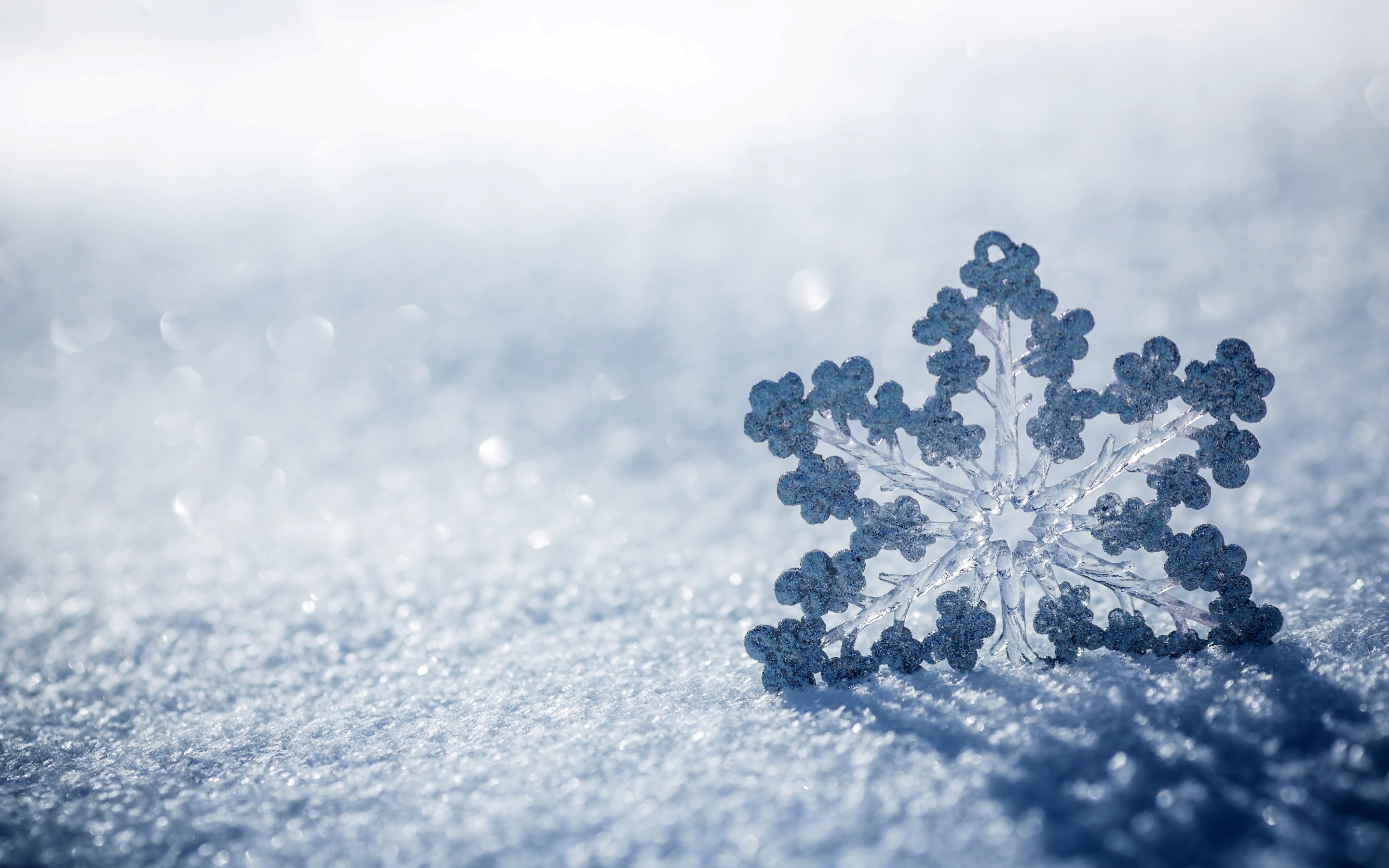 Ice Snow Wallpaper