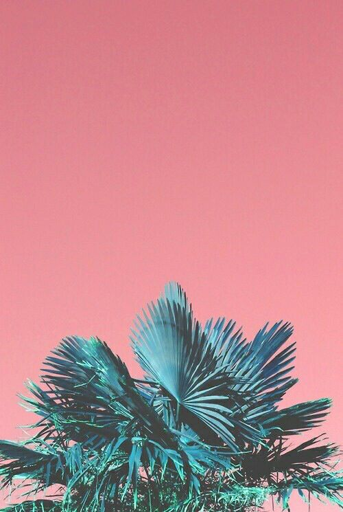Indie Iphone Wallpaper
