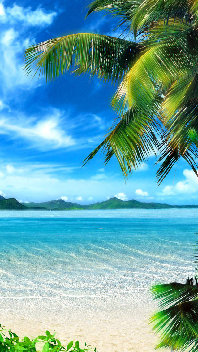 Iphone 5 Wallpaper Beach