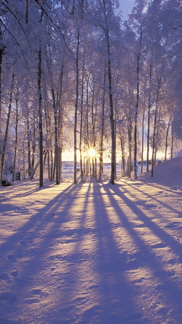 Iphone 5 Wallpaper Winter