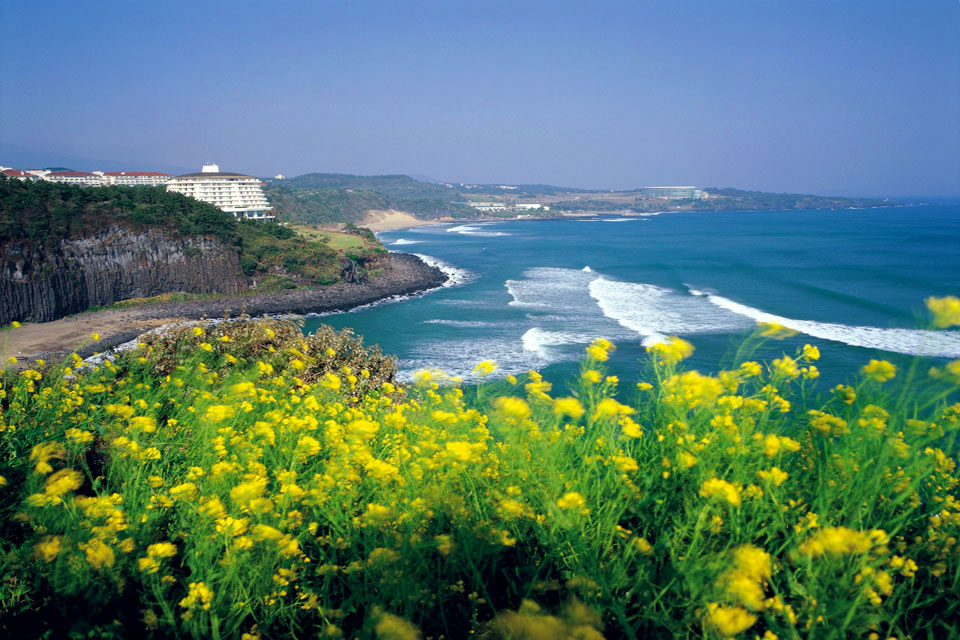 Jeju Island Wallpaper