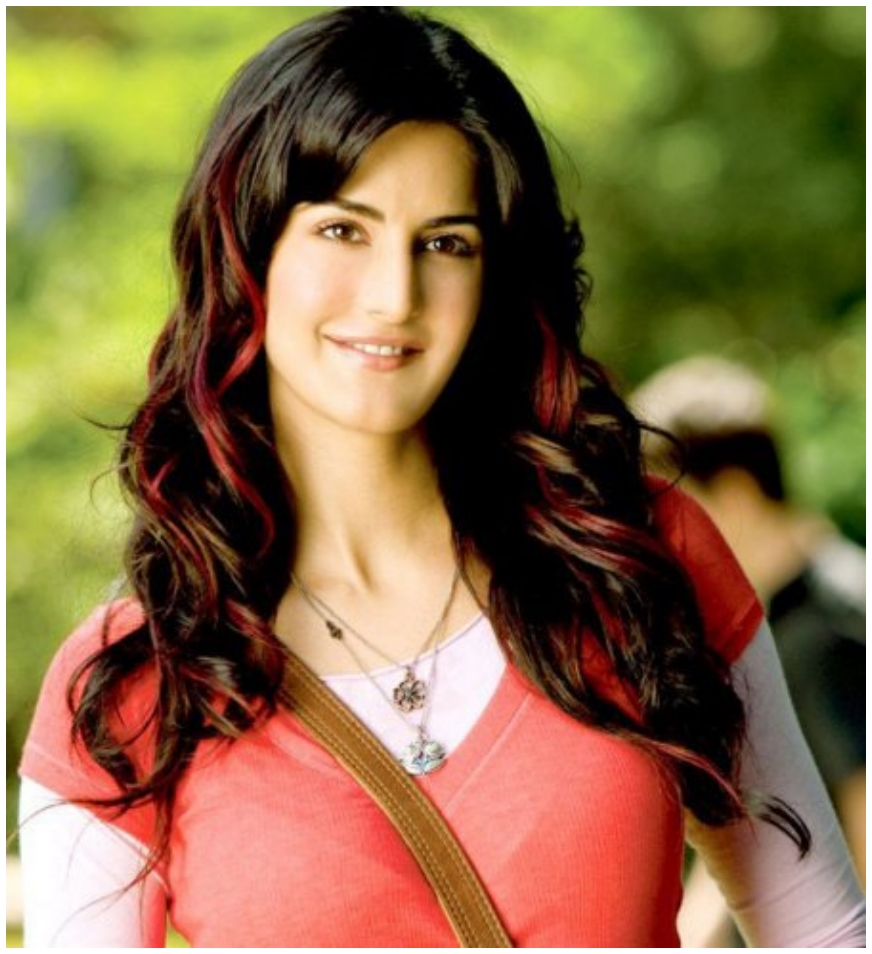 Katrina Kaif In Namastey London Wallpapers