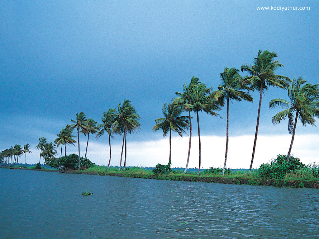 Kerala Nature Desktop Wallpaper