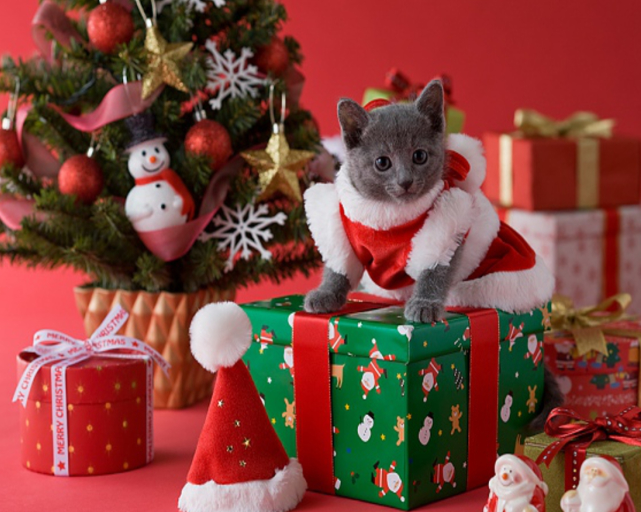 Download Kitty Christmas Wallpaper Gallery