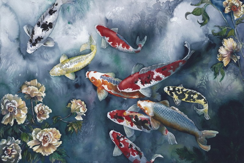 Download koi fish wallpapers gallery for Koi fish wallpaper