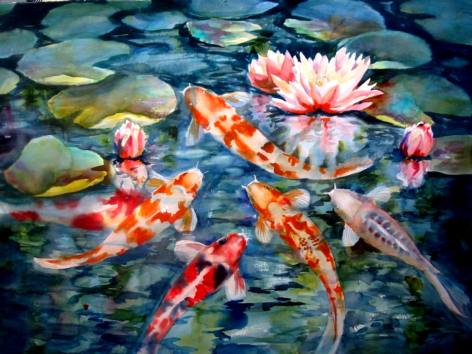 Koi Fish Wallpapers