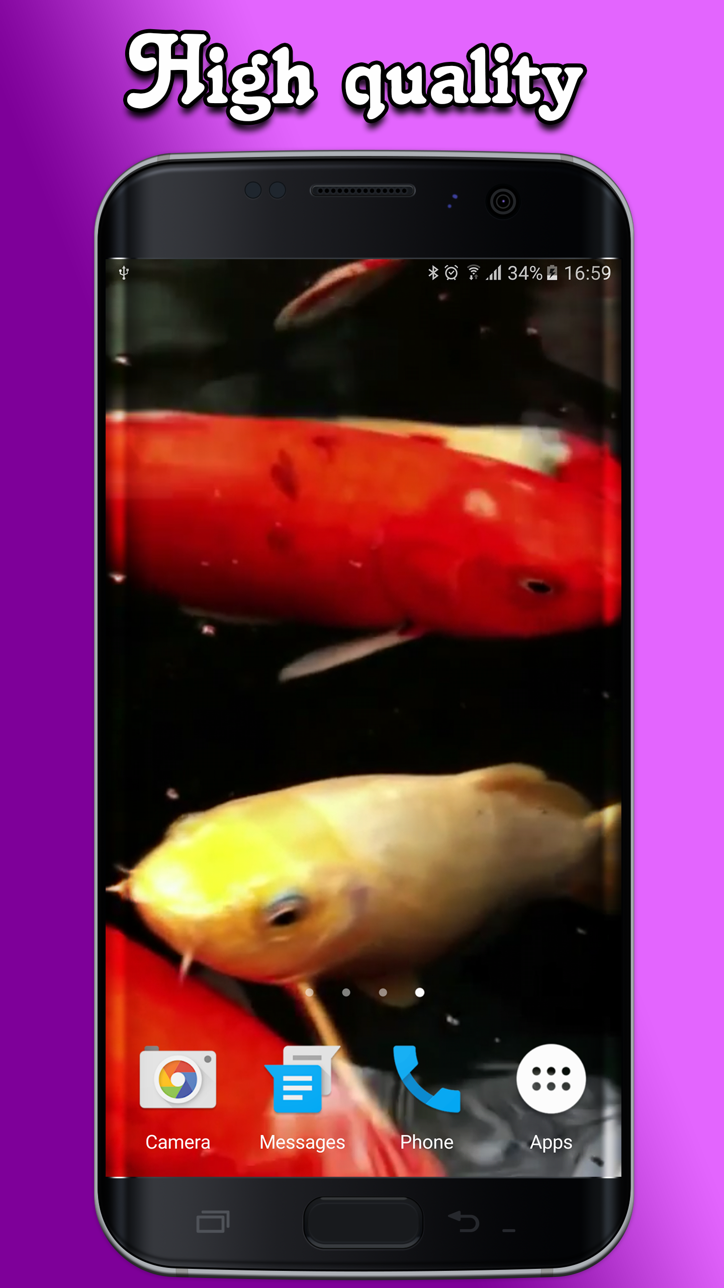 download koi live wallpaper full version apk free download