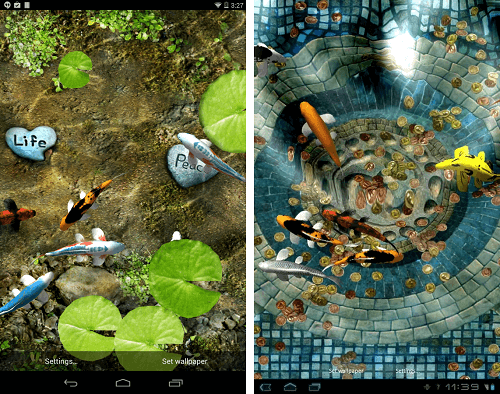 Koi Live Wallpaper Full Version Apk