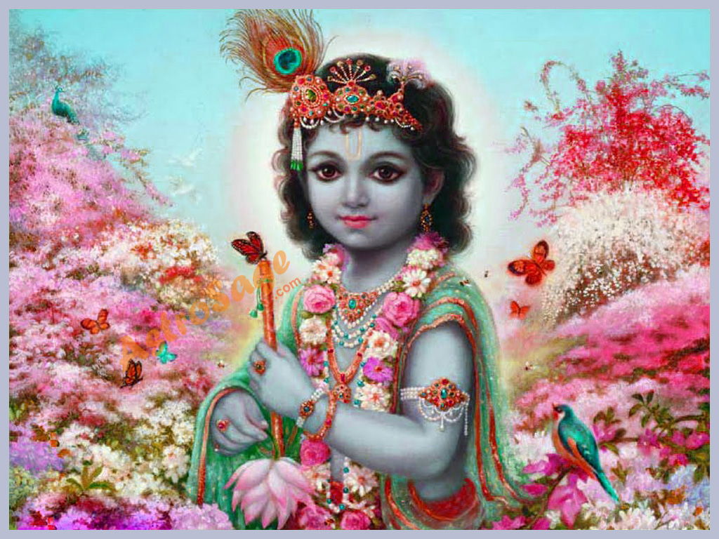 Krishna Picture Wallpaper