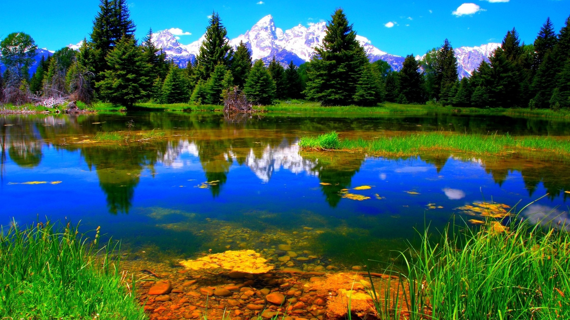 Landscape Full HD Wallpaper