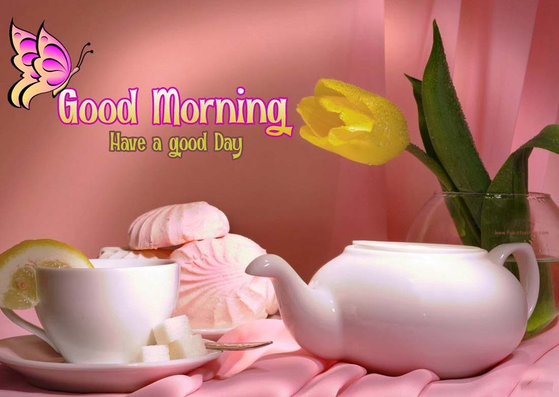 Latest Good Morning Wallpaper Download