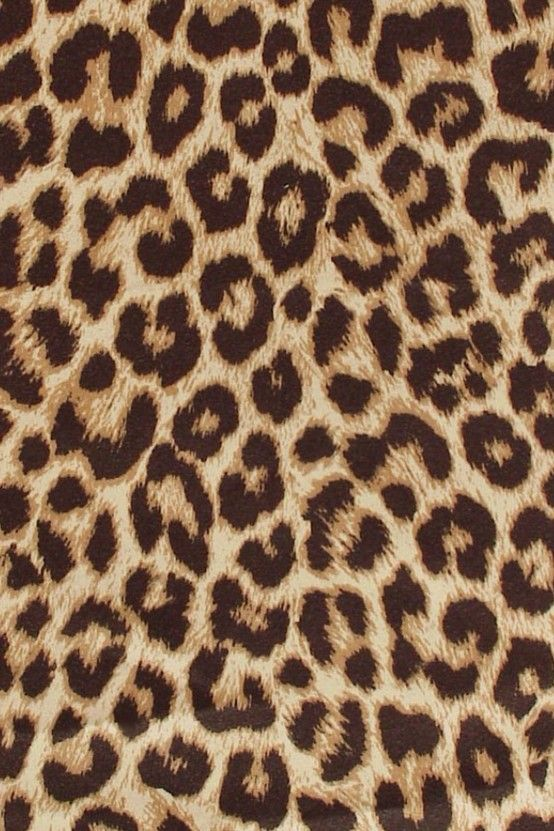 Leopard Phone Wallpaper