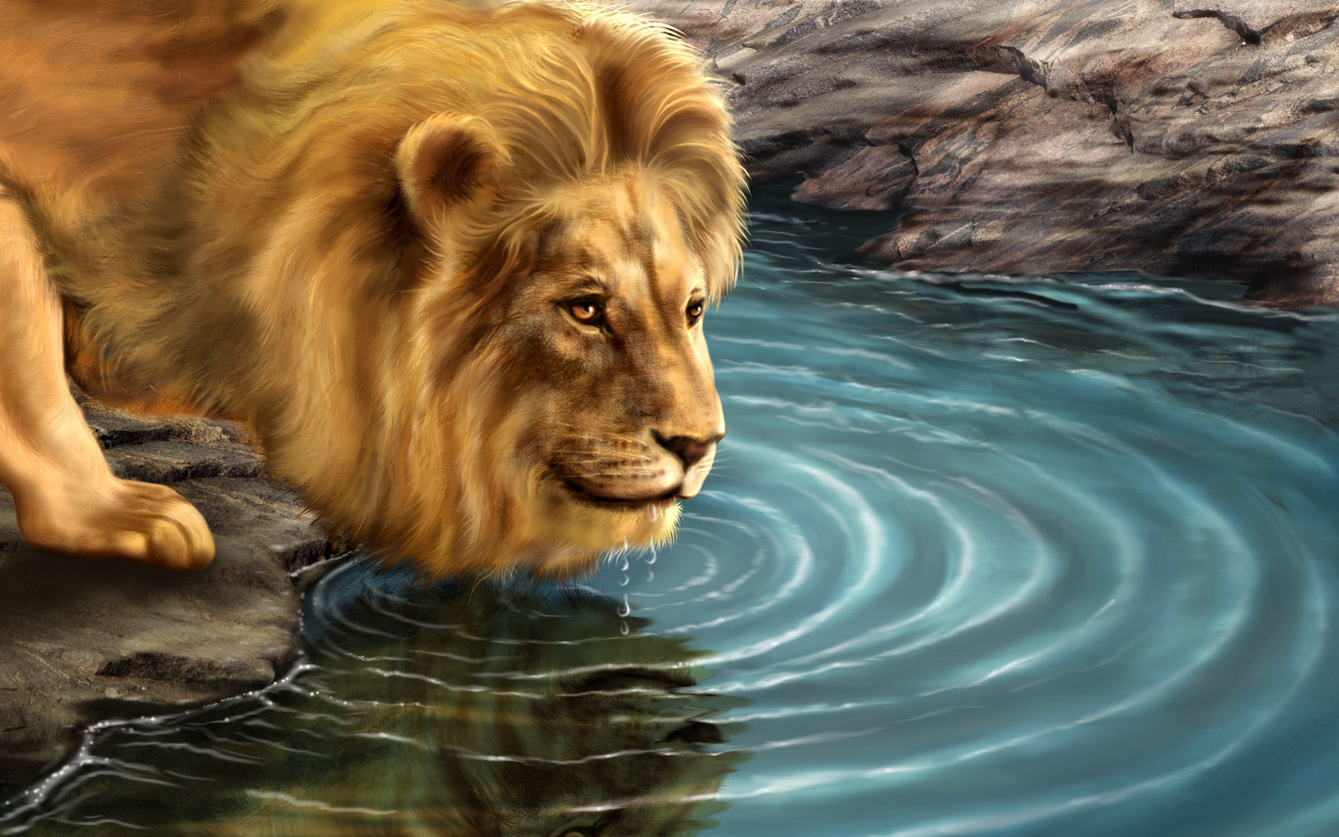 Download lion animated wallpaper gallery - Best animal wallpaper download ...