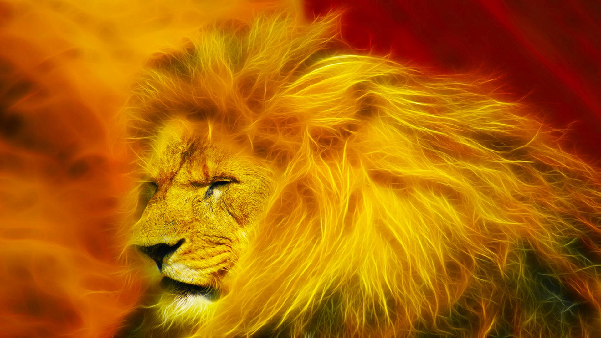 Download Lion King Wallpapers HD Free Download Gallery