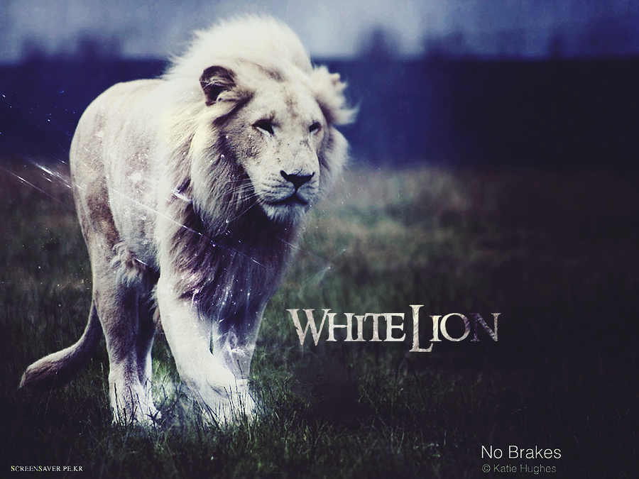 Lion White Wallpaper