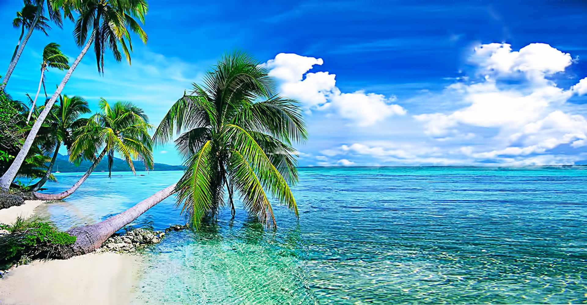 Live Beach Wallpaper For Desktop