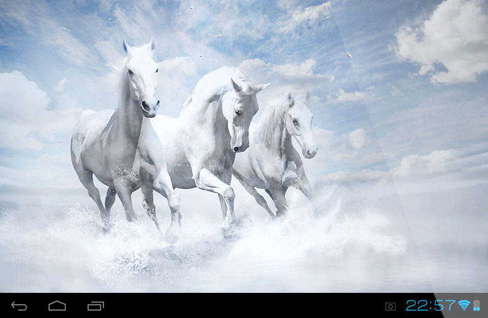 Download Live Horse Wallpaper Gallery