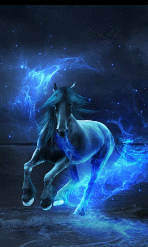 Live Horse Wallpapers