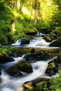 Live Nature Wallpaper For Android