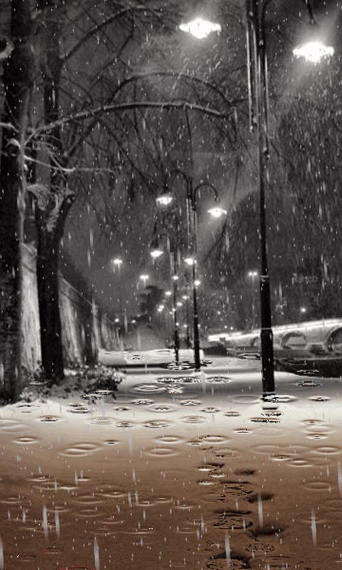 Download Live Rain Wallpapers Gallery