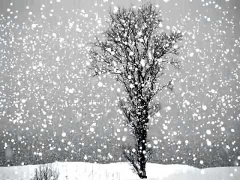 Live Snowing Wallpaper
