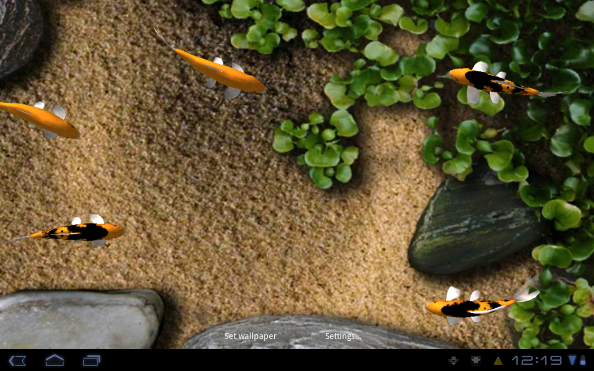 Live Wallpaper Koi