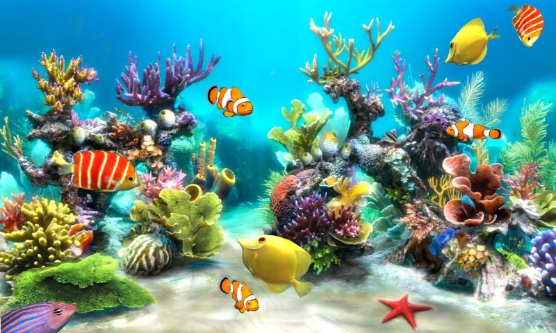 Live Wallpapers Underwater
