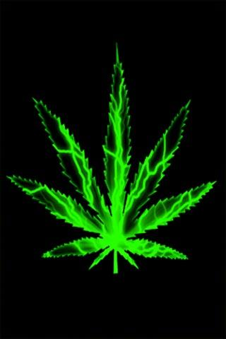 download live weed wallpaper gallery