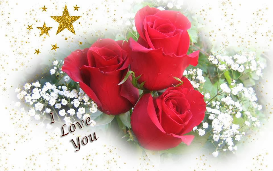 Love Flower Wallpaper Free Download