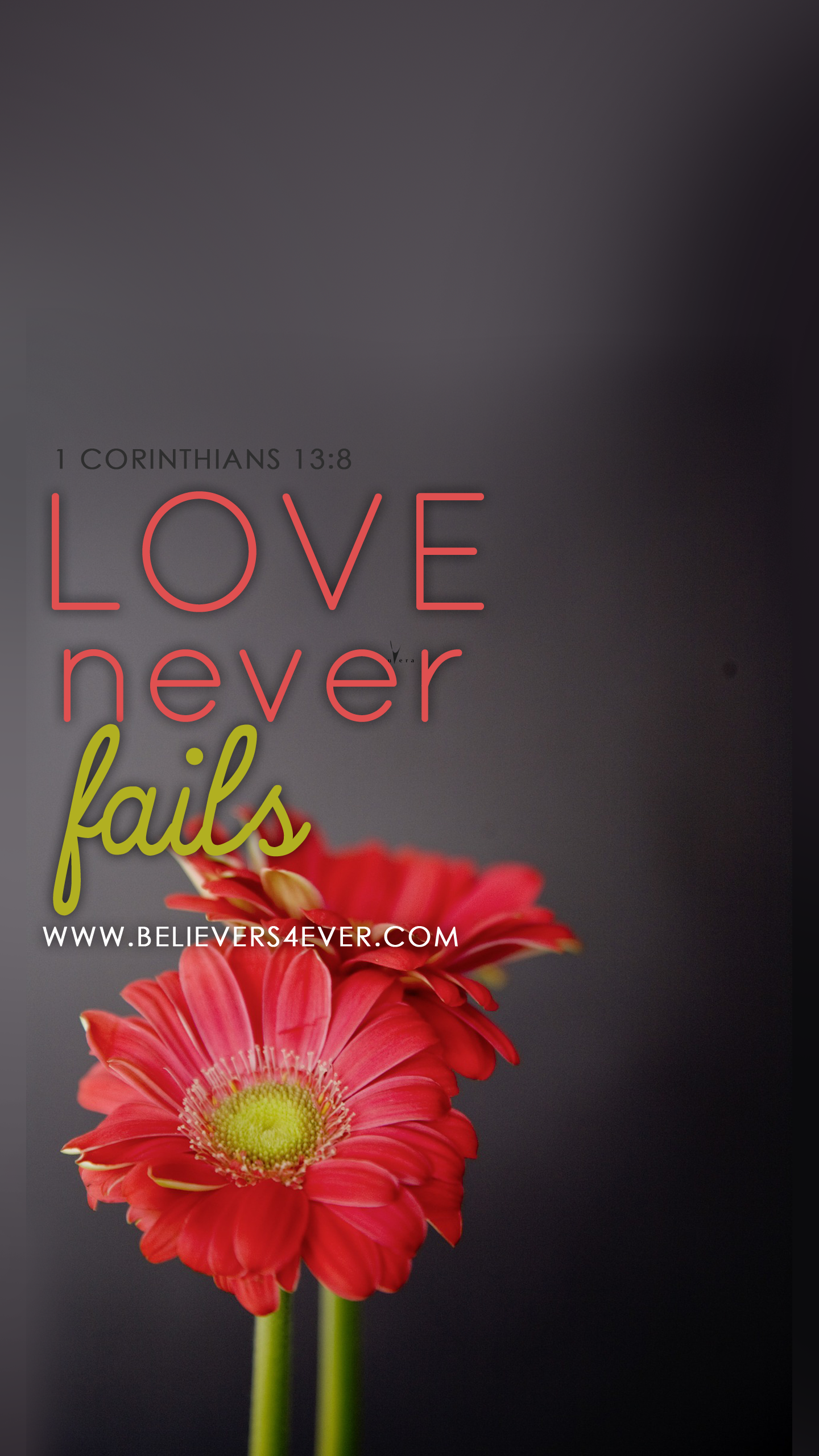 Download Love Never Fails Wallpaper Gallery
