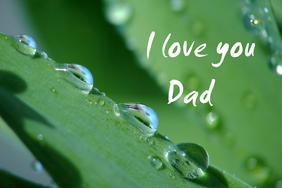 Love U Dad Wallpaper