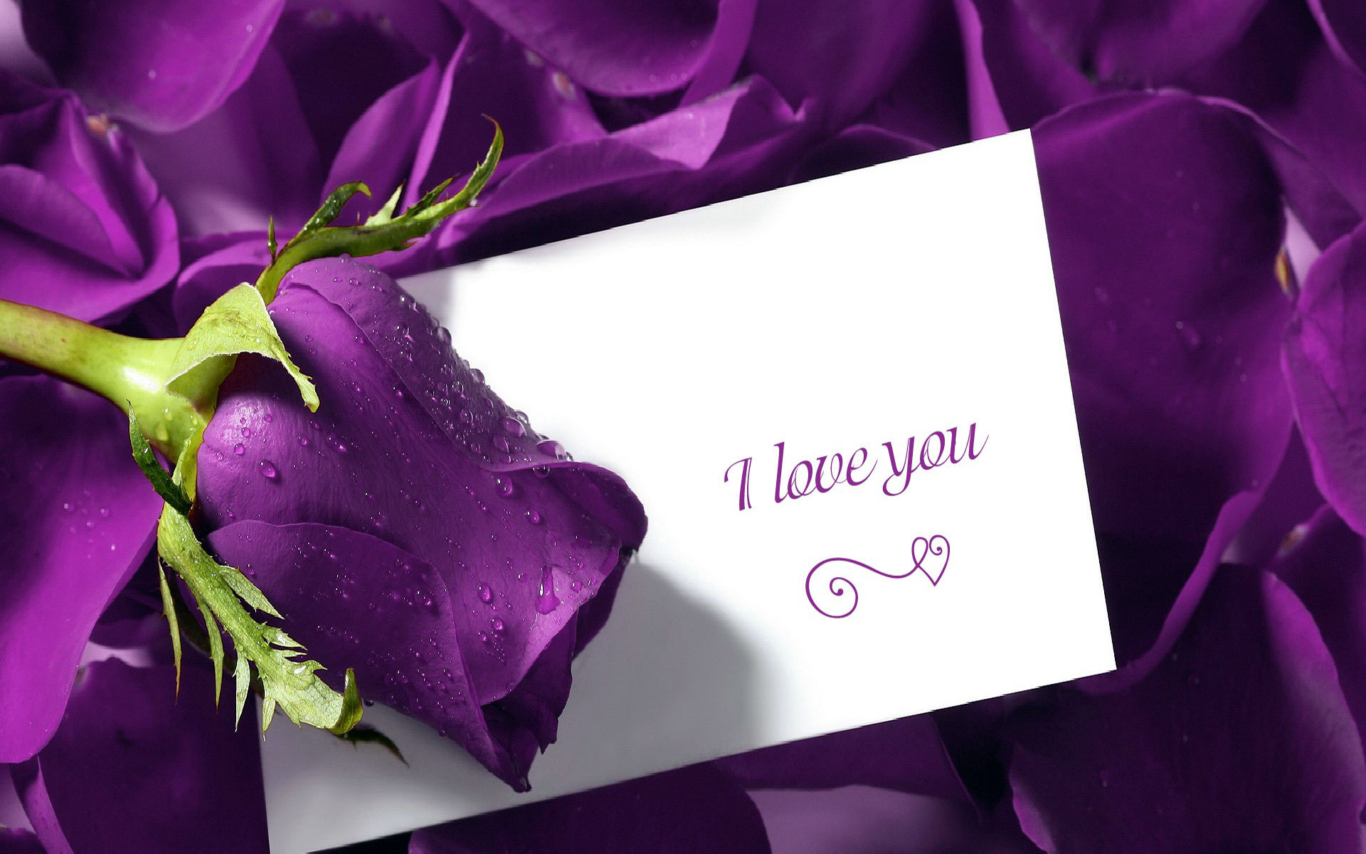 Love Wallpaper Free Download HD