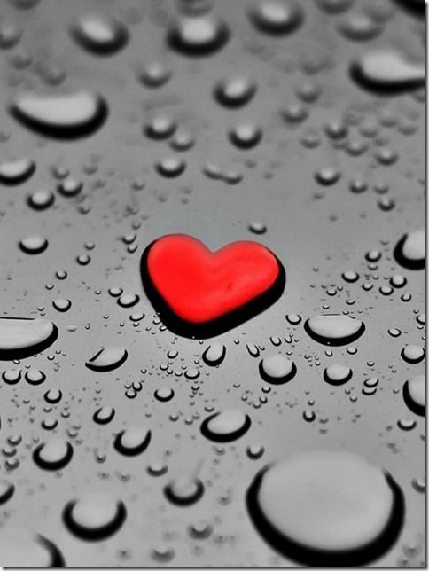 Download Love Wallpapers For Android Gallery
