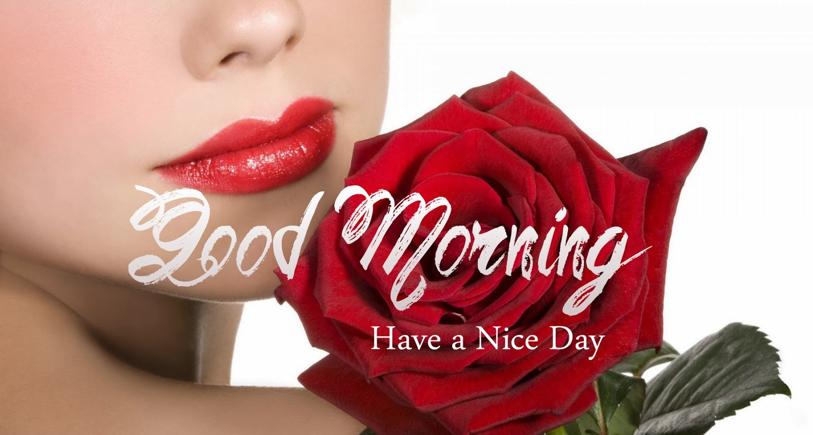 Lovely Good Morning HD Wallpapers