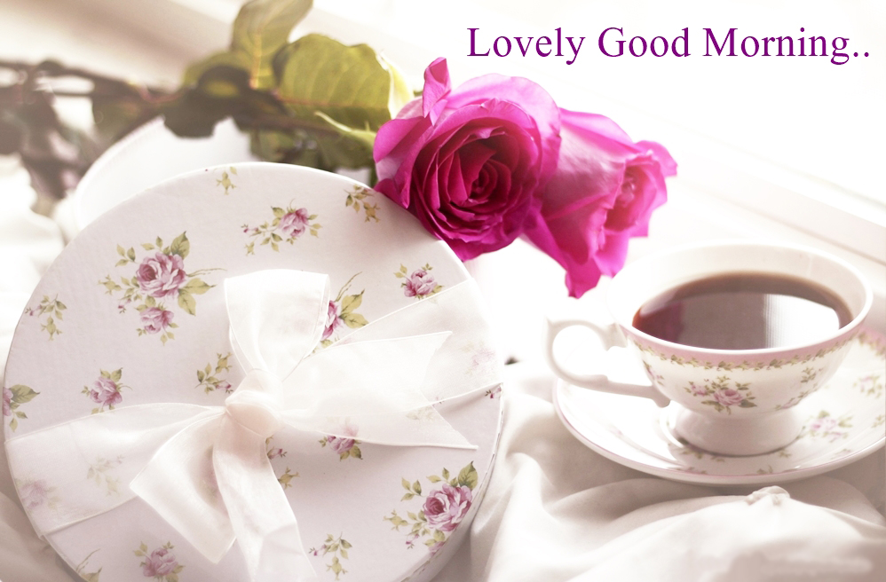 Download Lovely Good Morning HD Wallpapers Gallery