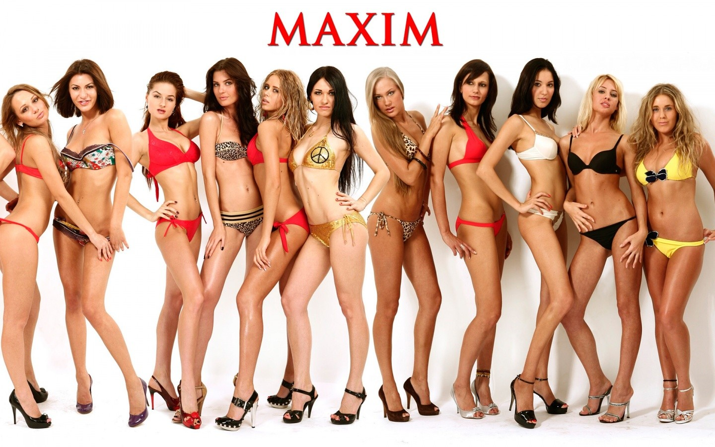 Maxim Wallpaper