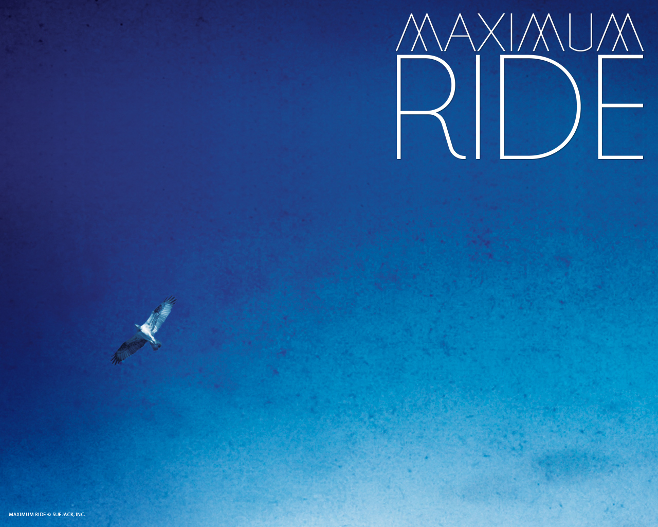 Maximum Ride Wallpapers