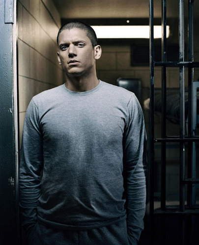 Michael Scofield Wallpaper