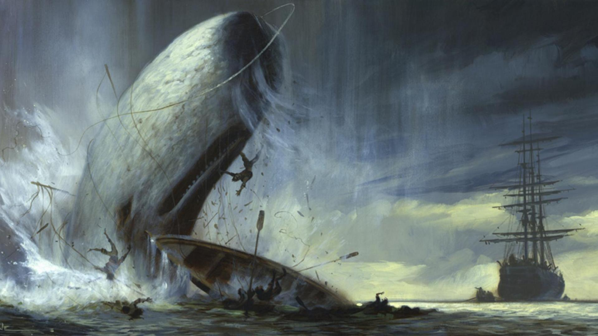 download moby dick wallpaper gallery