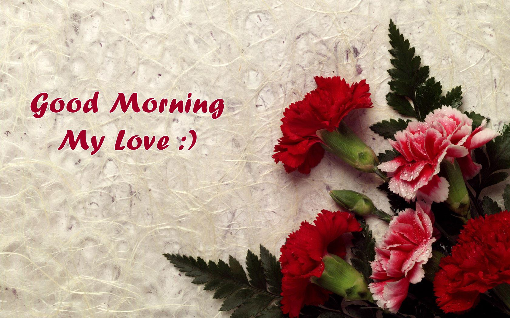 Morning Love Wallpapers