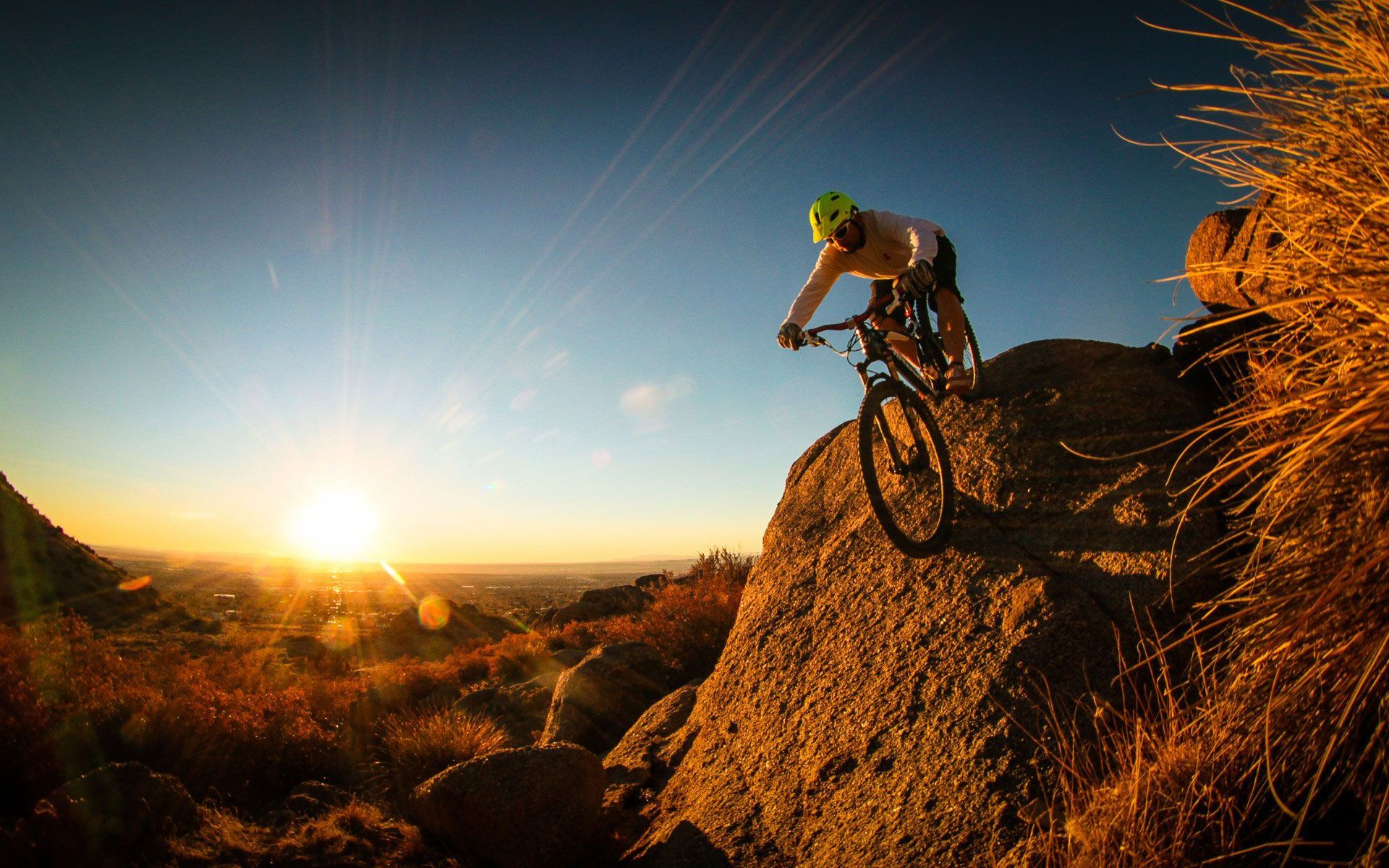 Mountain Biking Wallpaper