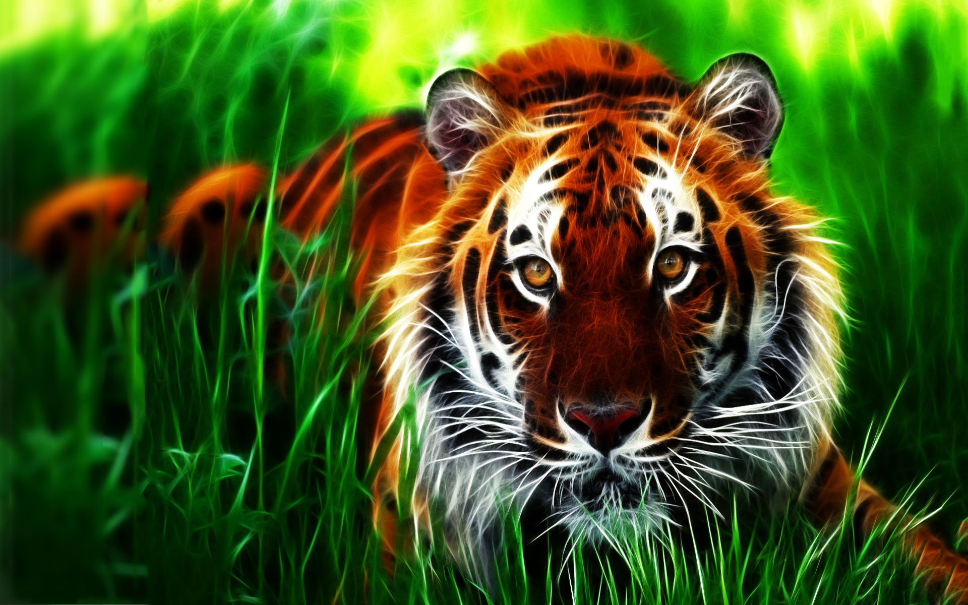 Moving Animal Wallpapers